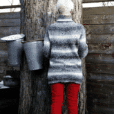 MY ULTIMATE GUIDE TO MAKING MAPLE SYRUP