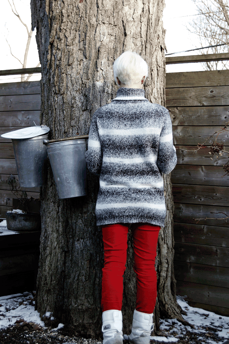 Karen Bertelsen in red pants and big sweater, checking on sap buckets in her backyard.