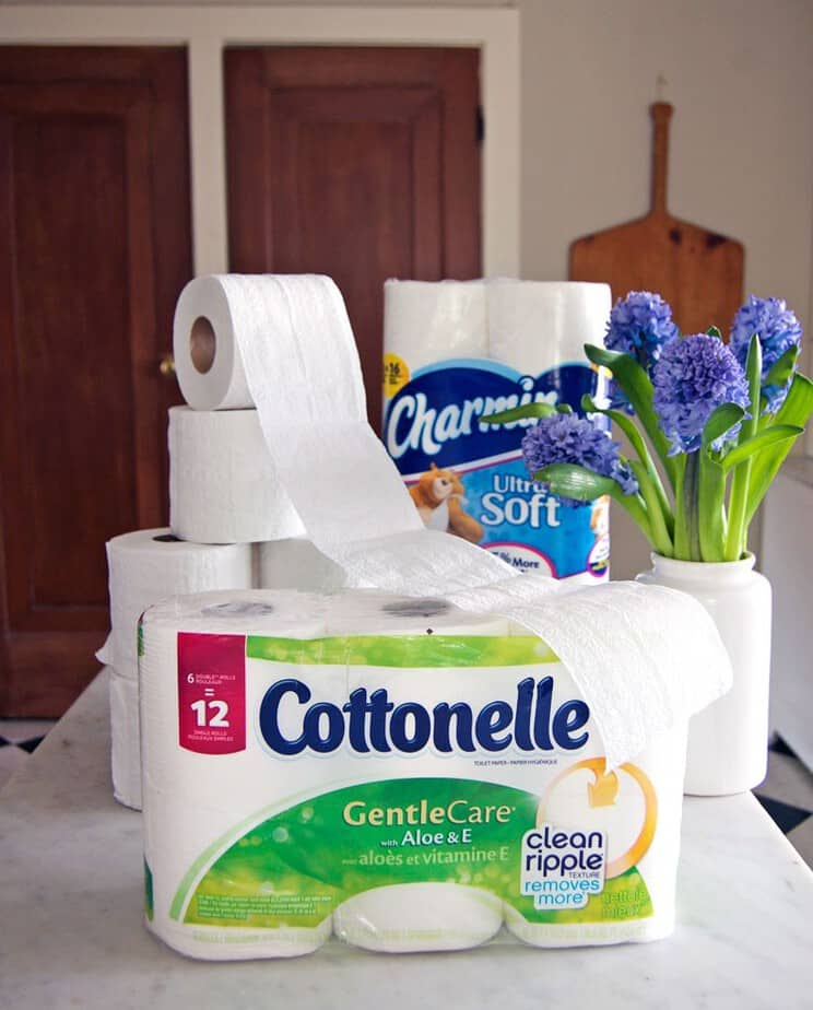 THE BRAND OF TOILET PAPER YOU SHOULD NEVER USE. | The Art of Doing ...