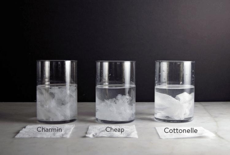 toilet-paper-test-dissolving-3
