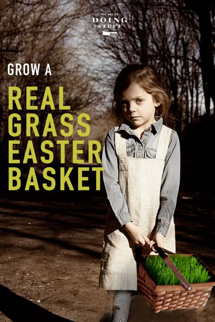 Grow a real grass Easter basket in ... 5 days. You need a basket, dirt, plastic and seed. And in 5 days you\'ll have grown grass so long it\'ll need mowing! (with scissors)