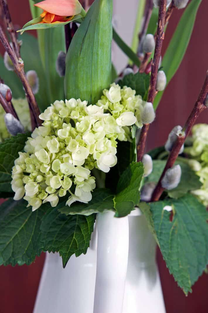 How To Revive A Hydrangea And Possibly A Wedding The Art Of Doing Stuffthe Art Of Doing Stuff