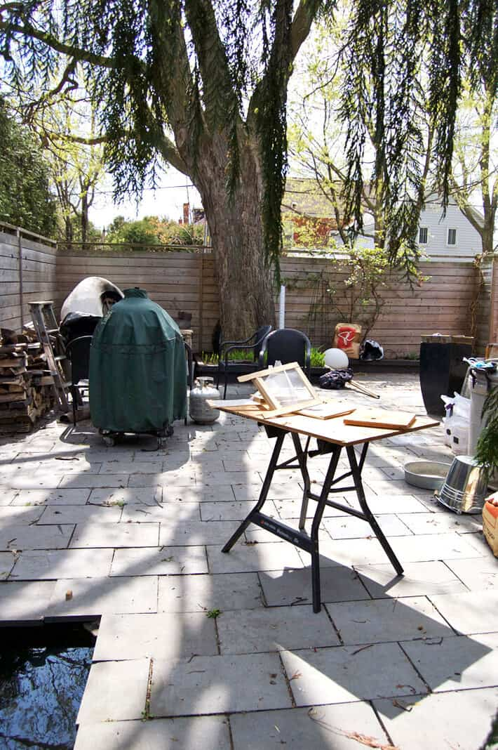 gross-backyard-2