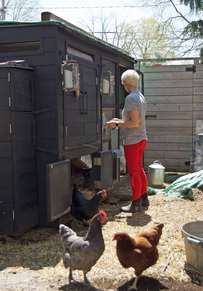 spring-cleaning-coop-3