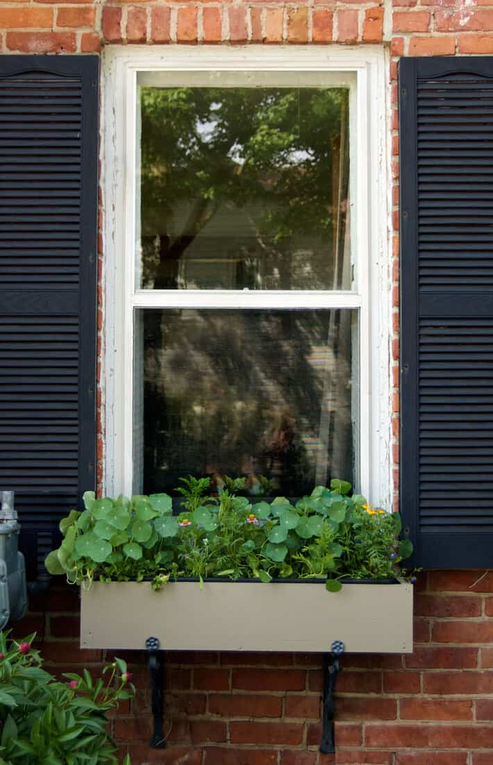 diy-windowbox