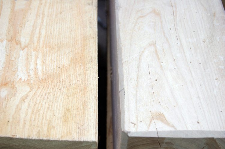 worm-holes-hammer-marks