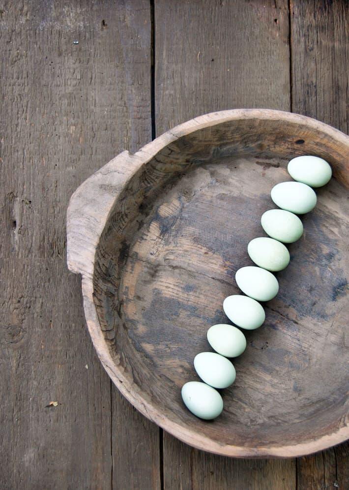 ameraucana-eggs-2