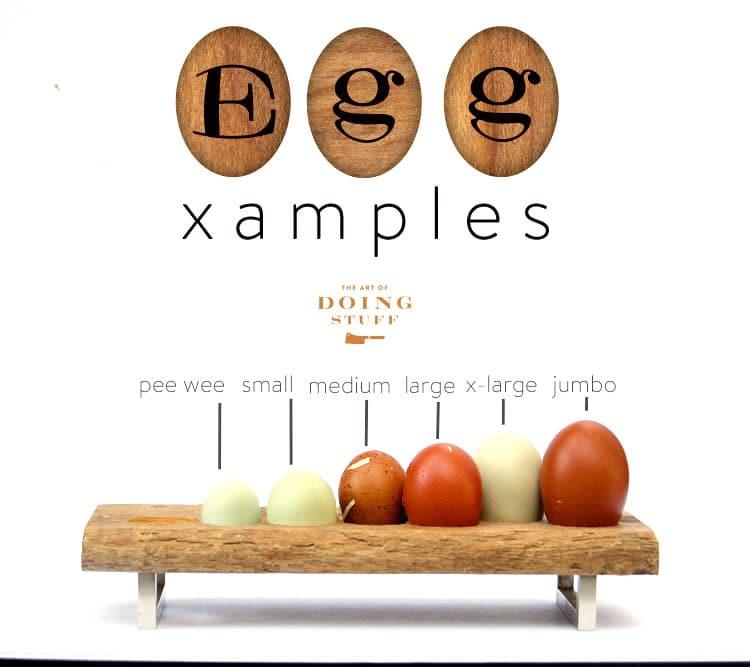 eggamplesfinal