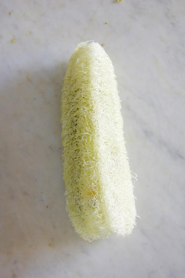grow-your-own-luffah-sponges