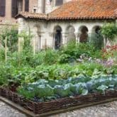 VEGETABLE GARDENING INSPIRATION. THIS YEAR'S PLANNING HAS BEGUN.