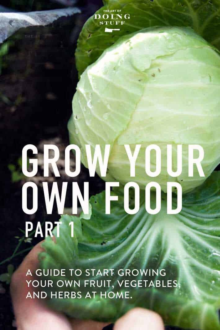 GROW YOUR OWN FOOD. PART I.