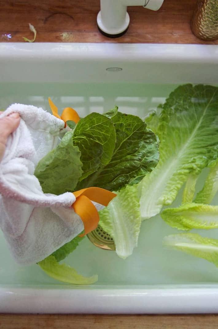 Filling a damp salad bag with wet lettuce.