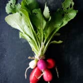 Join Me in The Great Radish Experiment!