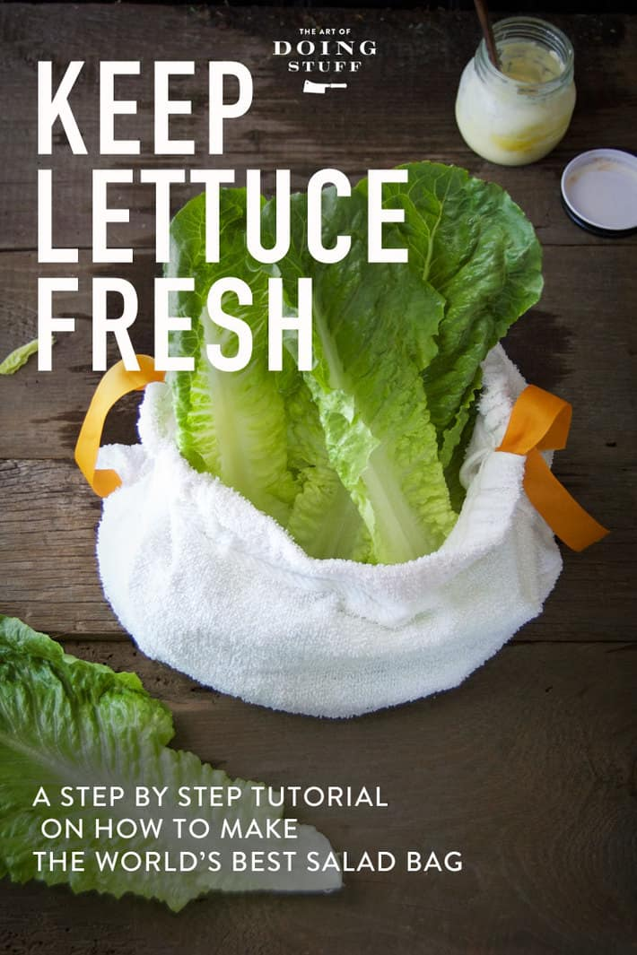 How to Store Lettuce and Keep it Fresh