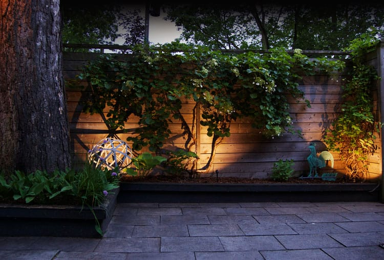 DIY LED lighting shines up on a horizontal wood fence with a climbing hydrangea.