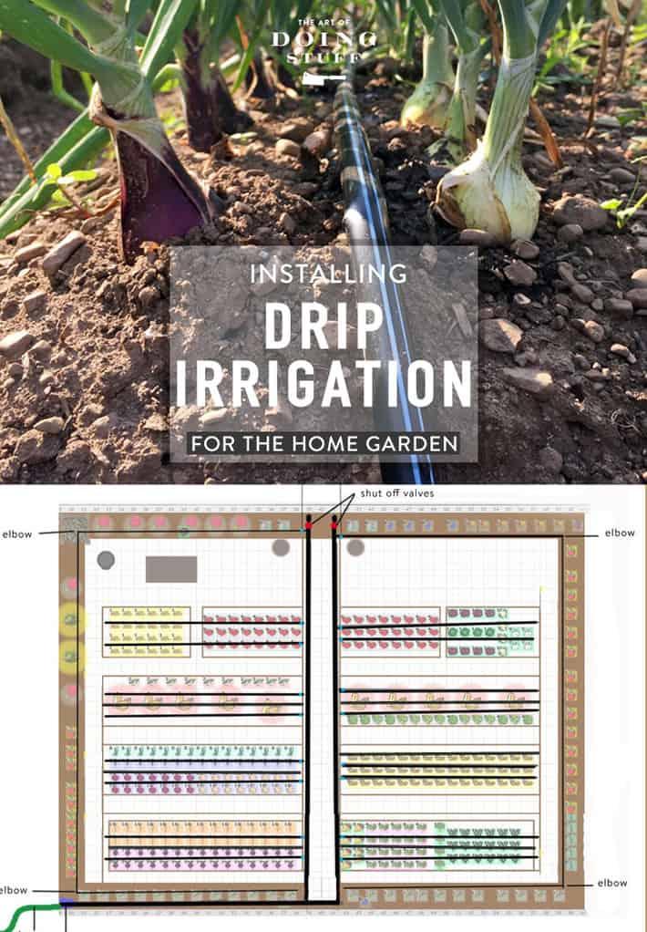 Installing Drip Irrigation in Your Home Garden.