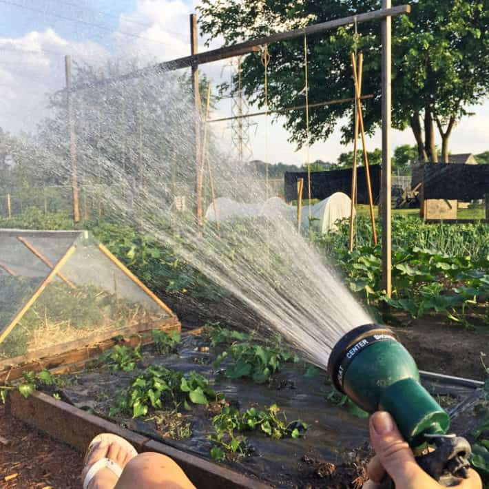 A woman sits in a chair hand watering her garden with a sprinkler hose.