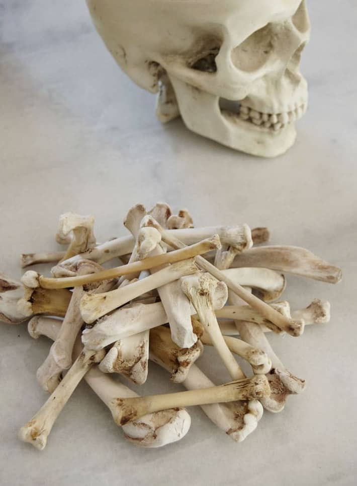 Halloween Bone Craft Make A Crown Wreath Or Pile With Chicken Bones The Art Of Doing Stuff