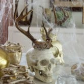 DIY Halloween Decorations. Creepy, Elegant & Haunting.