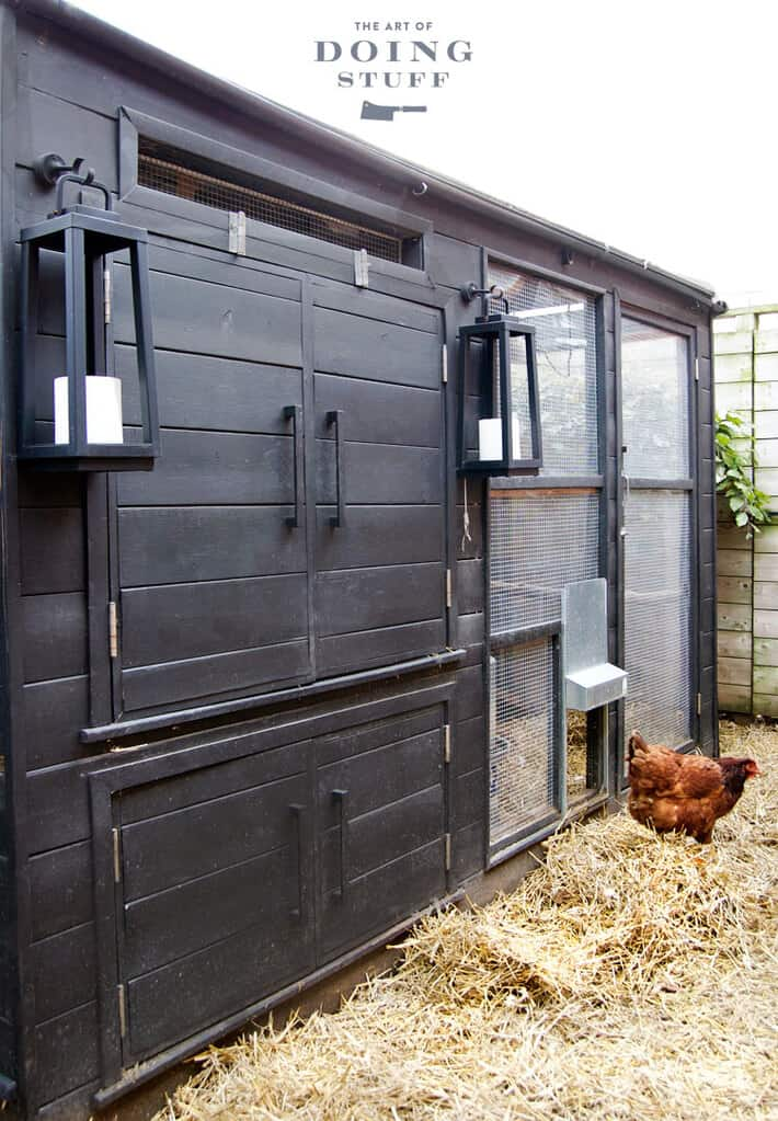 Winterize a chicken coop