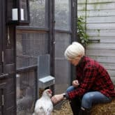 HOW TO WINTERIZE A CHICKEN COOP.