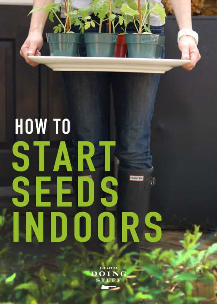 How to Grow Vegetables & Flowers from Seed.