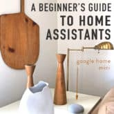 A Beginner's Guide to Home Assistants (Google Home, Amazon Alexa etc).