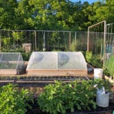 The DIY Hinged Hoop House: An Update.