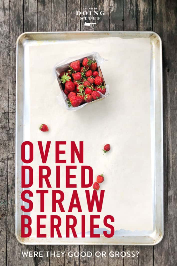 Pinterest is my favourite place for images. Not always my favourite for recipes. But I had seen this dried strawberry pin for a few years now and finally gave it a shot with my huge strawberry harvest. Were they good, or gross? Find out.
