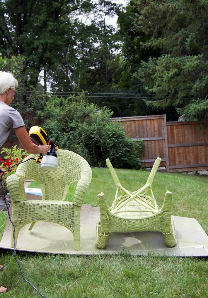 Spraying 2 wicker chairs first coat with green paint on lawn. Cardboard under chairs.