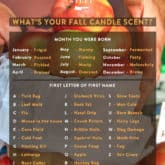 What Is Your Fall Candle Scent? My Take On an Internet Scentsation.