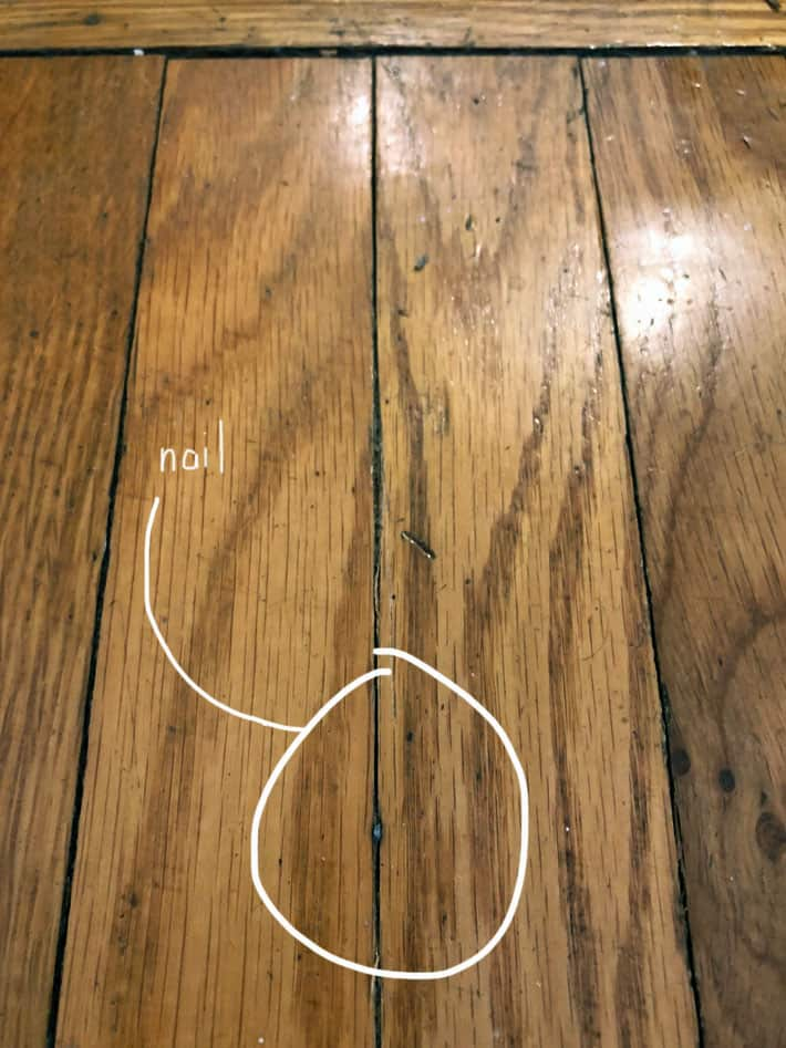 Finishing nail showing through crack in hardwood flooring.