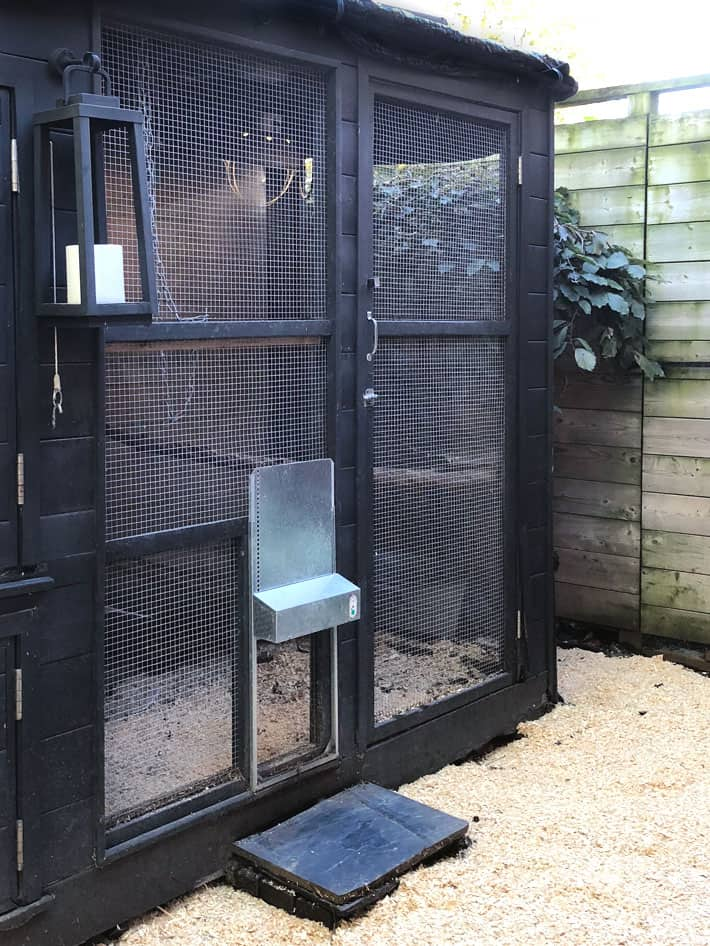 an Automatic Chicken Coop Door