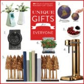 Stocking Stuffers, Unique Gift Ideas and Gifts for Under $25.
