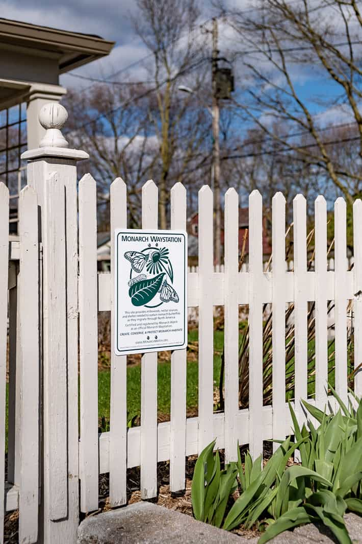 Monarch Watch Waystation sign hanging on outside of white picket fence.