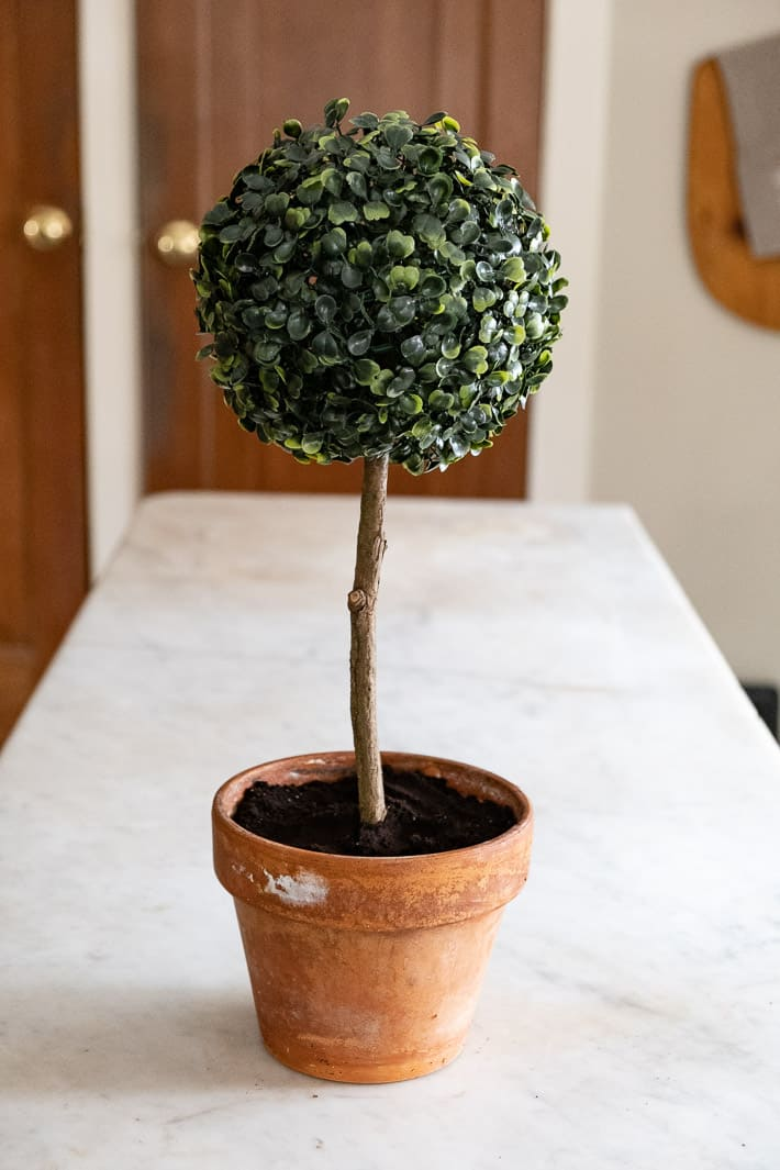 Artificial boxwood topiary in clay pot in farmhouse kitchen.