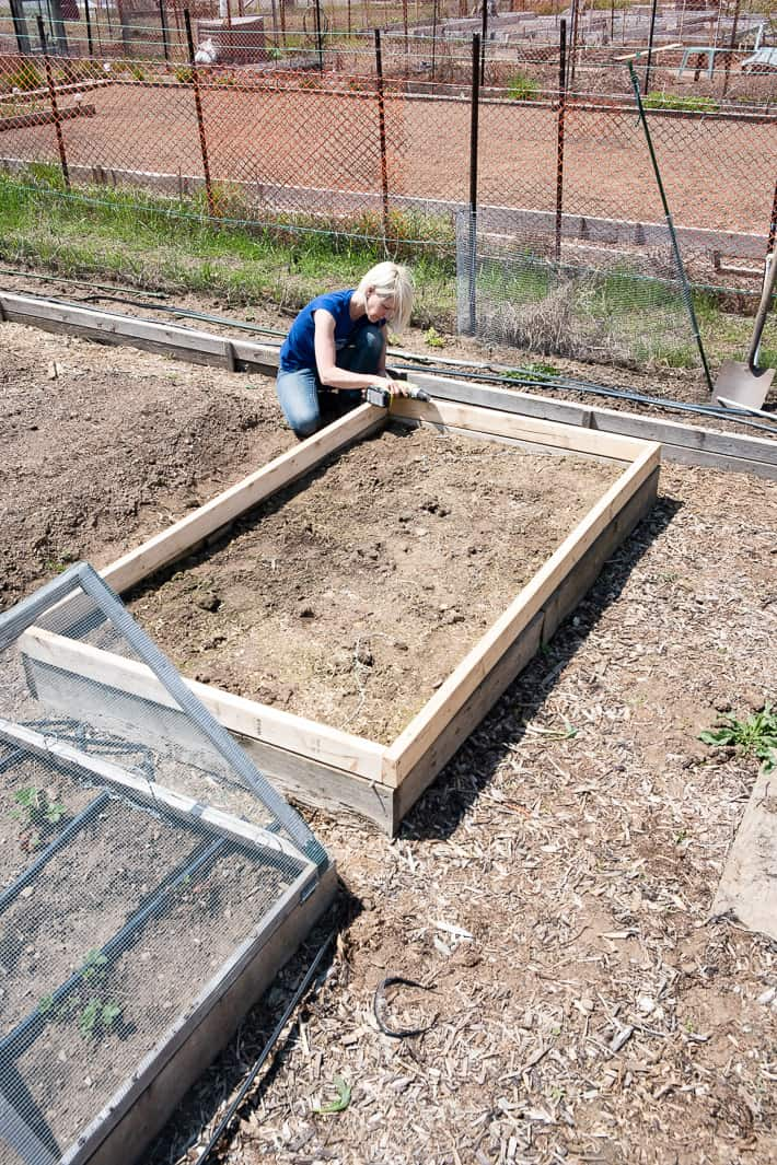 Karen Bertelsen in a large garden screwing together a frame to support a hinged hoop house to protect vegetables from insects.