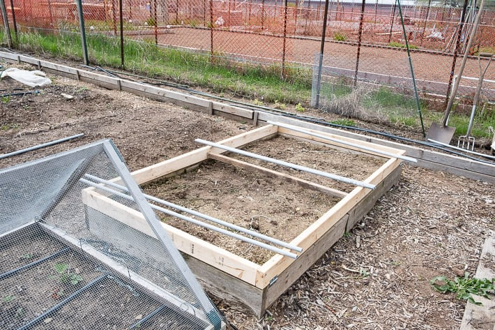 Hinged hoop house frame build, with lengths of electrical conduit laying across the top, ready to be attached.