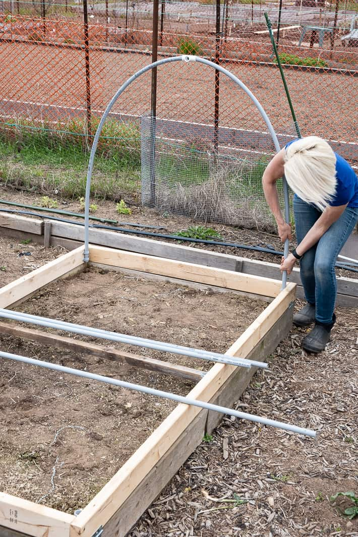 Karen Bertelsen bends electrical conduit into place in clamps on the interior frame of a hinged hoop house.