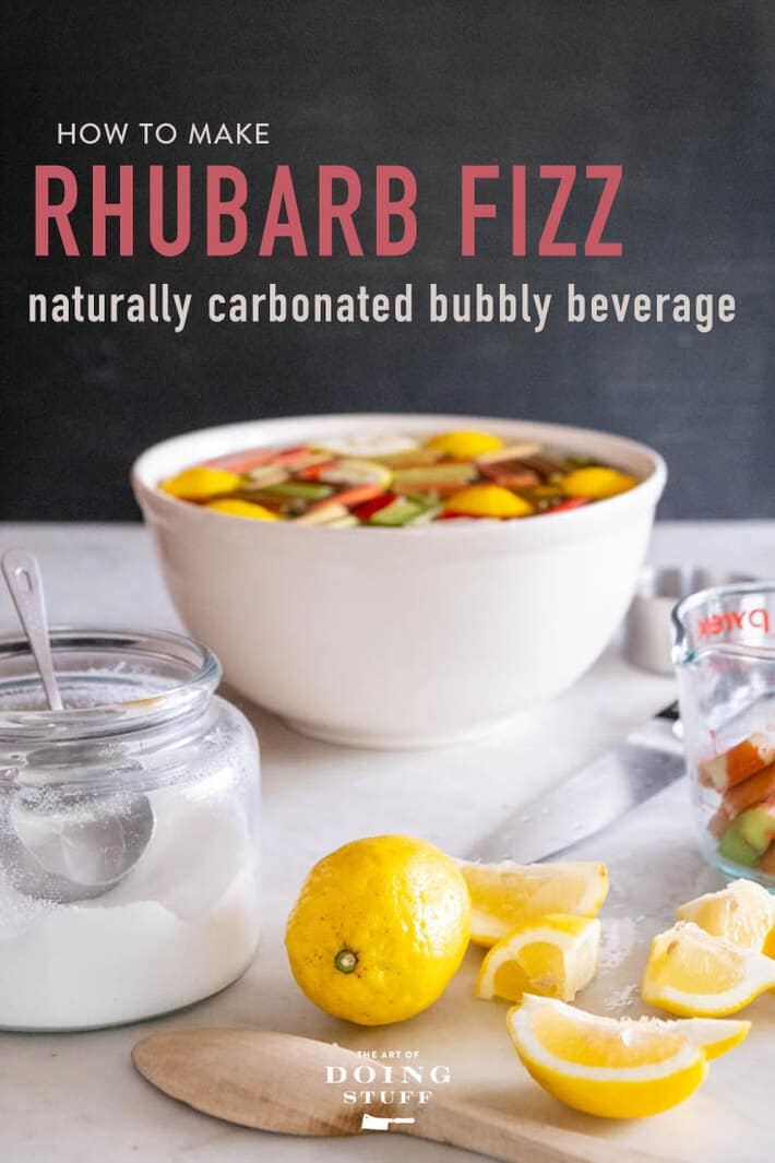 Have a rhubarb patch that just won\'t quit? Or a desire for natural bubbles to dance across your tongue? Try this sweet and tart Rhubarb Fizz. A bubbly, easy summertime drink.