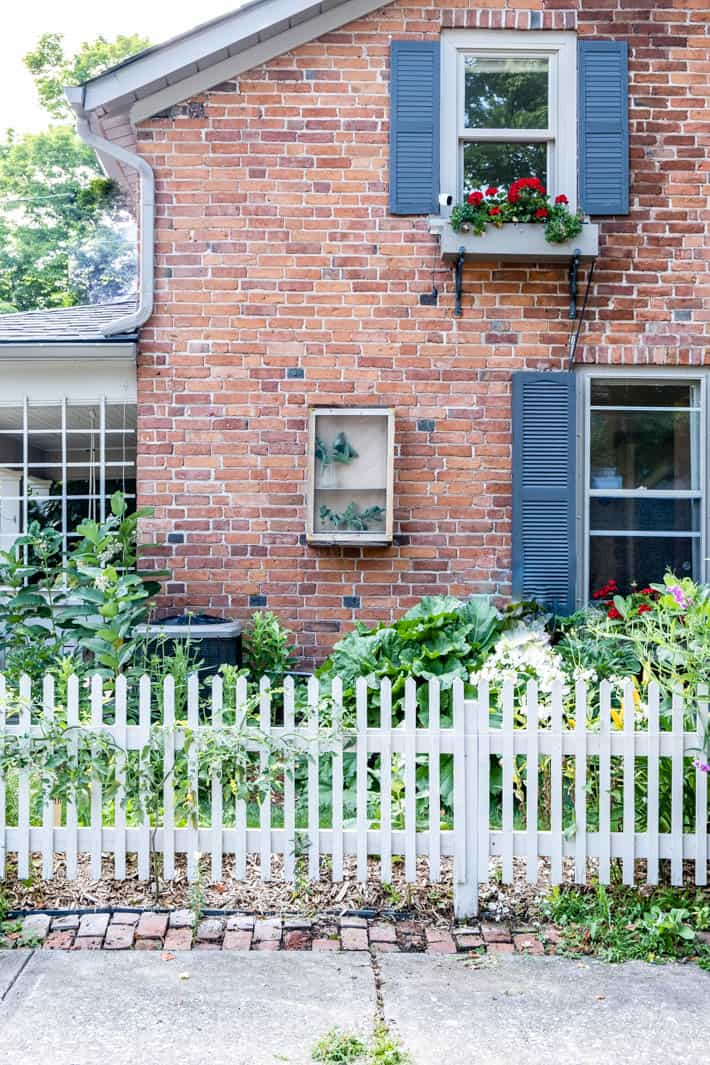 Street view of rustic wood DIY butterfly enclosure hanging on exterior brick wall.
