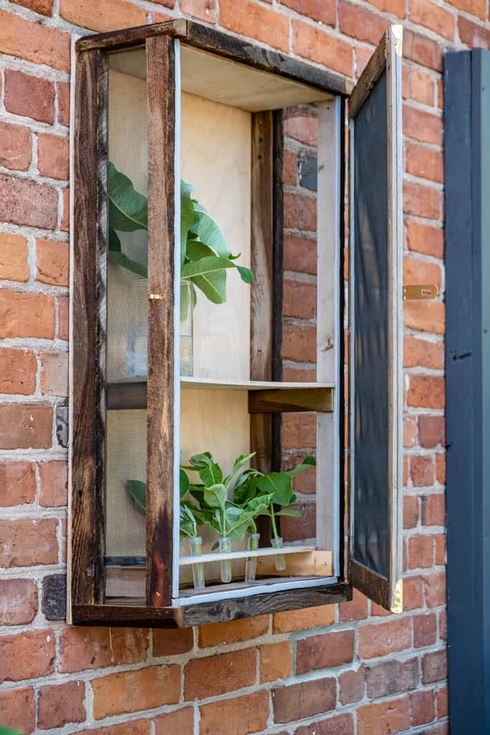 Rustic wood DIY butterfly enclosure hanging on exterior red brick wall.