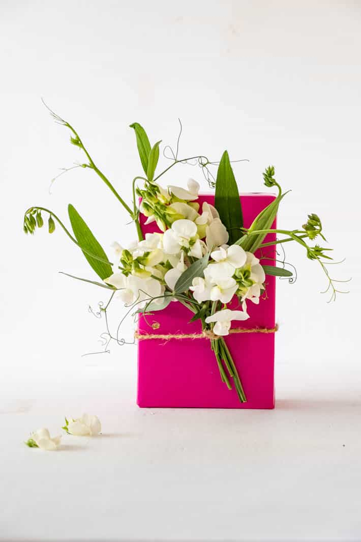 Head-on shot of Perennial Sweet Peas, Sweet Pea tendrils and greenery tied with twine to gift wrapped in fuchsia paper on white background. Two sweet pea blooms on table in foreground.