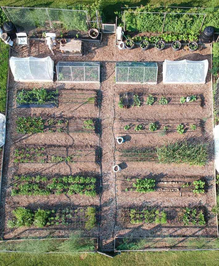 Overhead drone view of Karen Bertelsen's community garden.