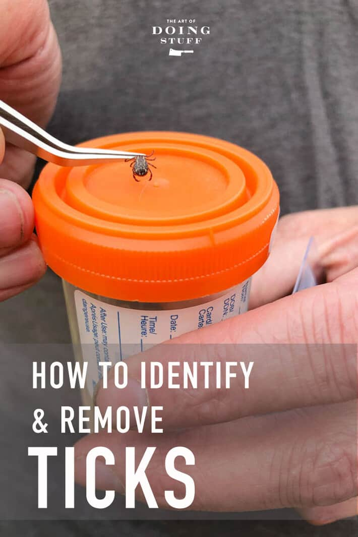 How to Remove a Tick.   Barf.