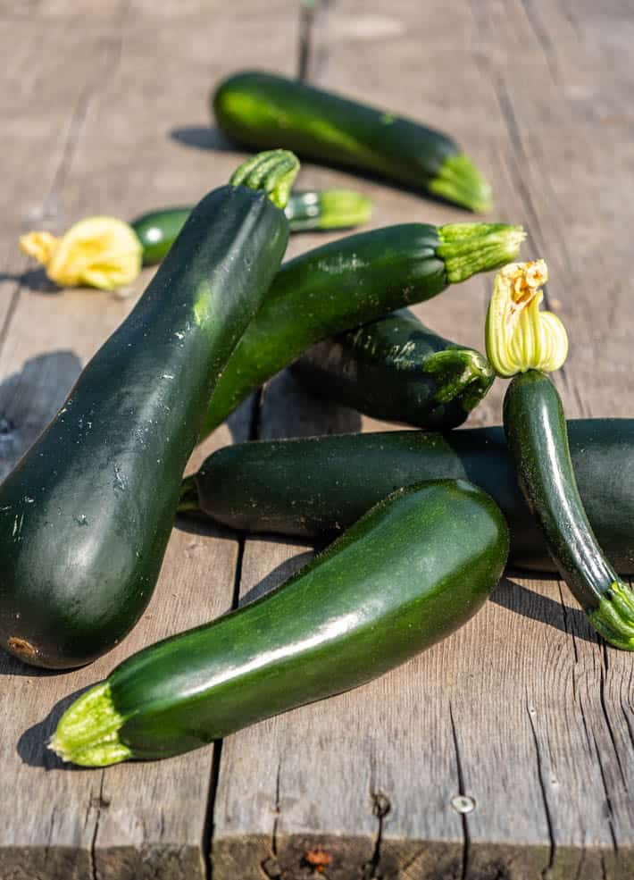 Various sized freshly picked zucchini (two with blossoms still intact) piled on an outdoor bench made of weathered wooden planks.
