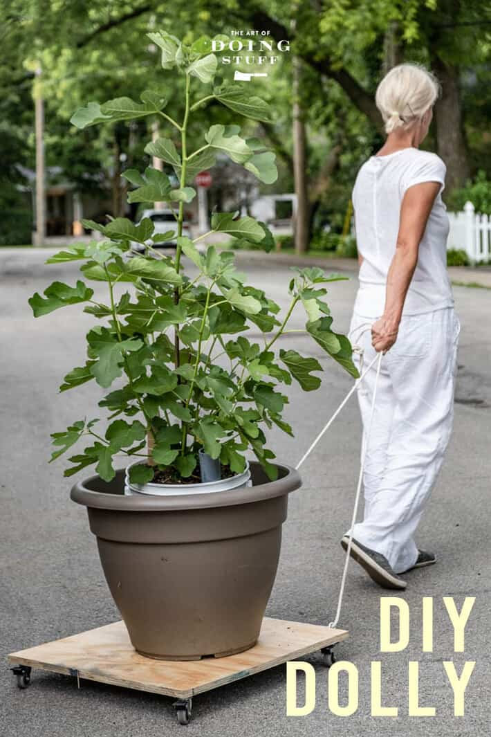 A 10 Minute DIY Plant Dolly That Can Also Easily Move Major Appliances.
