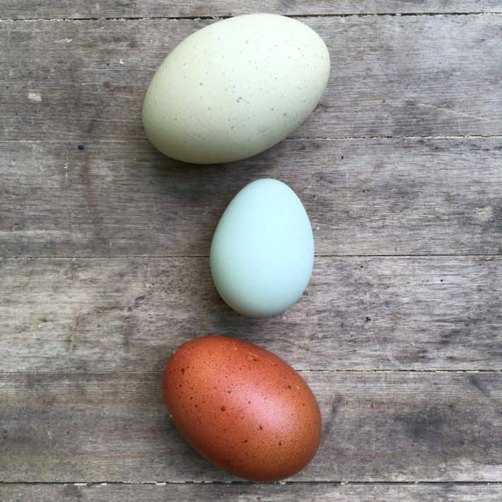 Three eggs on a rustic wooden background. The topmost is a huge pale-green egg, the middle is a small light-blue egg and the bottom is a regular-size speckled brown egg.