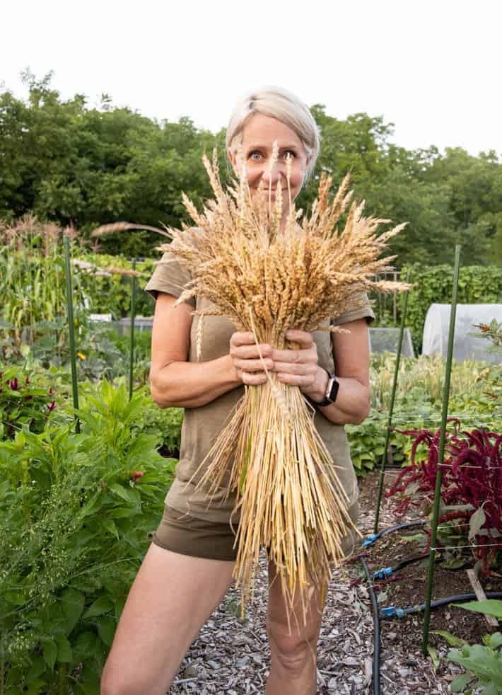 Karen Bertelsen stands in her garden holding a bundle of wheat she grew.