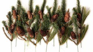 Pine Picks. Set of 12.